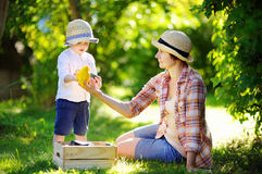Middle aged woman and her grandson enjoying harvest Royalty Free Stock Image