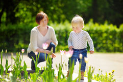 Middle aged woman and her grandson walking in park Royalty Free Stock Photos