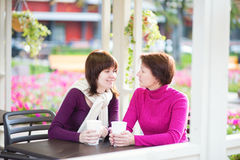 Middle aged woman and her grown up daughter Royalty Free Stock Photos
