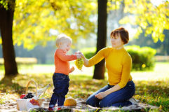 Middle aged woman and her little grandson having a picnic Stock Photography