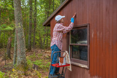 Middle aged woman painting shed Royalty Free Stock Image