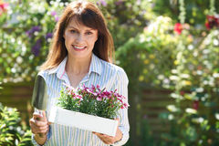 Middle Aged Woman Planting Flowers In Garden. Middle Aged Woman Plants Flowers In Garden stock photo