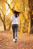 Middle-aged woman running woman.  Rear view. Stock Image