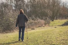 Middle-aged woman seen walking in a nature reserve using a walking pole. Middle-aged woman seen walking away from the camera, using a Walking Pole while walking royalty free stock photography