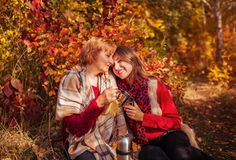 Middle-aged woman and her daughter having tea in the forest. Middle-aged women and her daughter having tea in autumn forest Royalty Free Stock Photos