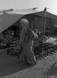 MIDDLE ATLAS, MOROCCO - JULY 1979. A woman carries her child on her back, after having bought shoes in a Berber market on July, 1979, Middle Atlas Mountain Royalty Free Stock Photography