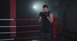 In the middle of boxing ring athletic guy with muscle boxing hard have a intense workout training.  stock video footage