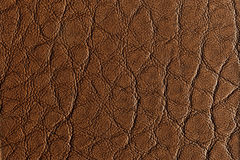 Middle brown leather texture. Close up of middle brown leather texture Stock Image