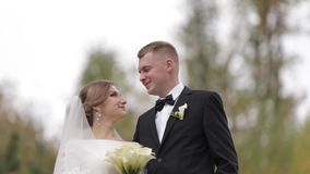 Middle celection of just married couple in park.  stock video footage