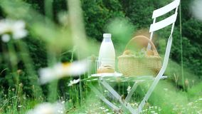 In the middle of a chamomile lawn, on a white chair is a bottle of milk, a basket of apples and bread