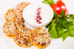 Middle East cuisine. a plate of delicious falafels Royalty Free Stock Photo
