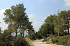 Middle East Landscape Stock Images