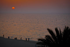 Middle east sunset stock images