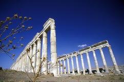 MIDDLE EAST SYRIA HAMA APAMEA RUINS Stock Photo