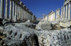 MIDDLE EAST SYRIA HAMA APAMEA RUINS Royalty Free Stock Photography