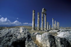 MIDDLE EAST SYRIA HAMA APAMEA RUINS Royalty Free Stock Image