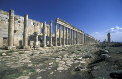 MIDDLE EAST SYRIA HAMA APAMEA RUINS Royalty Free Stock Images