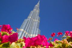 Middle East, United Arab Emirates, Dubai, Downtown, Burj Khalifa Stock Photography