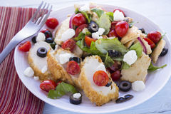 Middle Eastern Bread Salad with Chicken Royalty Free Stock Photo