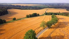 Middle european summer countryside landscape