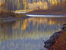 Middle Fork Colors. This image of the fall colors reflected in the river was taken in western MT Stock Photography