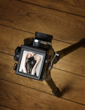 Middle format photo camera Royalty Free Stock Photography