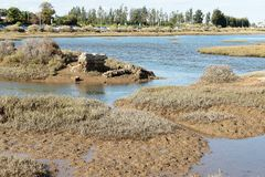 In the middle of the lagoon of ria formosa at low tide stock images