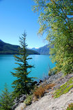 Middle lake. Canada bc in summer royalty free stock image