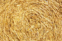 Middle of a pack of wheat strow Stock Photography