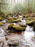 Middle of the river. A river in the great smokey mountains Royalty Free Stock Photos
