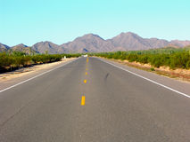 The Middle Road. Road in the desert Royalty Free Stock Images