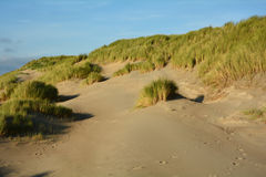 In the middle of Sand dunes with dunes grass on the North Sea Stock Photography