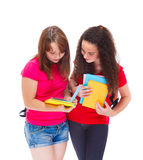 Middle school students Stock Photography