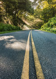 Middle of Skyline Drive with Shafts of LIght Muted Color Royalty Free Stock Image