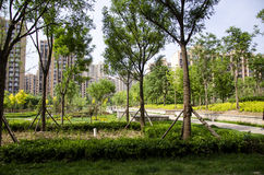 Middle of the street garden. At residence community stock image