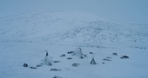 In the middle of tundra in Arctic a big camp of yurts with reindeers drone capturing form the top. stock video