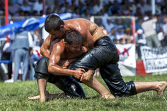 Middle weight wrestlers engage in battle at the Elmali Turkish Oil Wrestling Festival in Elmali in Turkey. Elmali is a town located in the Taurus Mountains in royalty free stock photo