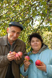 Middleaged couple stand under tree, hold apples Royalty Free Stock Photo