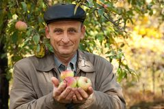 Middleaged man with apples stand near apple-tree Royalty Free Stock Image