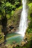 Middleham瀑布,多米尼加 库存图片