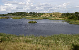 Middleton Hall RSPB Reserve Royalty Free Stock Images