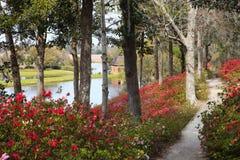 Middleton Plantation Charleston South Carolina royaltyfri bild