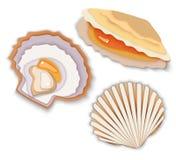 Middy do maluski das ostras da guloseima do marisco no escudo ilustração stock