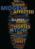 Midge Bite Misery Text Background  Word Cloud Concept Royalty Free Stock Image