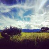 Midi d'Oahu avec lumineux Photo stock