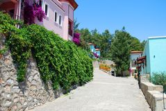 Miditerranean Street. Road Full of Blooming Trees and Purple Flowers Stock Photos