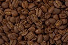 Midium Roast Coffee Beans royalty free stock images