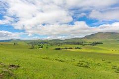 Midlands. Green Midlands in Natal Drakensberg, South Africa stock photos