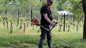 Midle aged man using a brush cutter. Mature man in the garden. Gardening concept.  stock video footage
