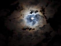 midnatt Royaltyfria Foton